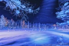 蒼い中、駆ける雪