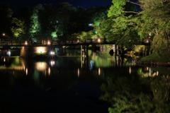 Hikone Castle night view②~Color