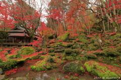 秋の隠れ里~赤い石の庭園
