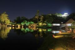 Hikone Castle night view