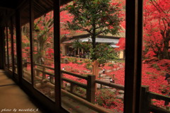 秋の隠れ里~赤い古刹