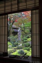 秋の隠れ里~掛け軸庭園