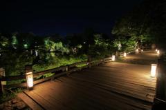 Hikone Castle night view③~龍臥橋