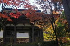 二天門の秋