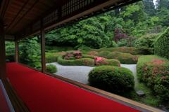 サツキの庭園