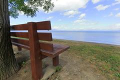 「#あのベンチ」から見た夏の琵琶湖(うみ)