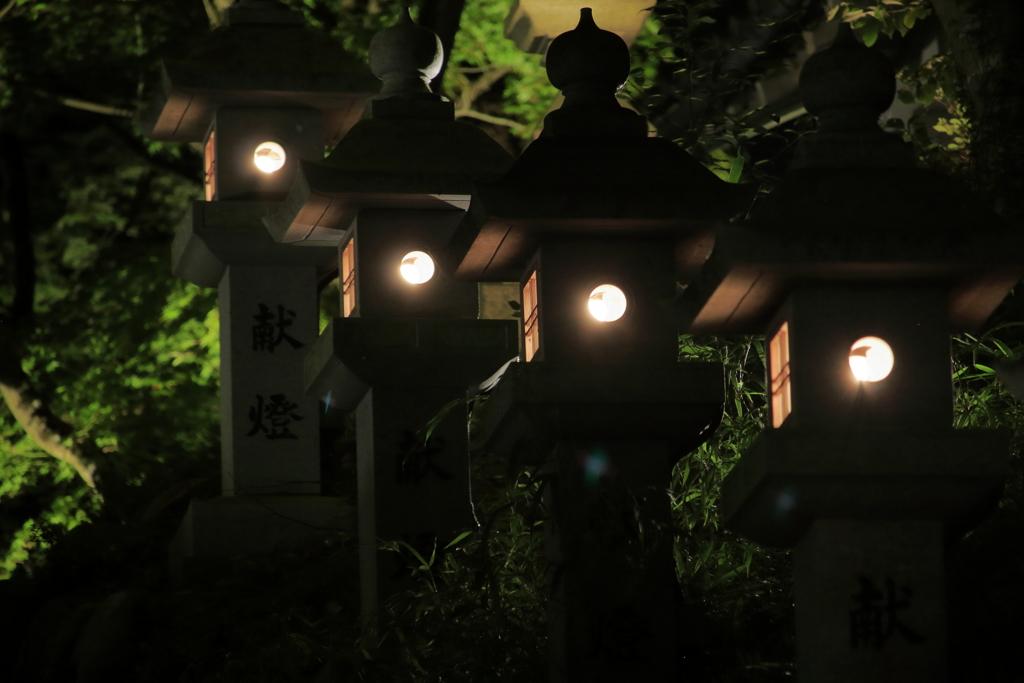 神あかり2018~連なる灯篭(見つめるモノアイ)