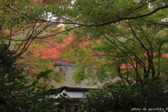 隠れ里の秋