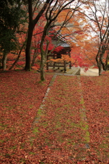 紅葉の緋毛氈