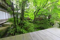 百の彩の庭園