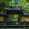 夏の永源寺
