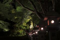 神あかり2018~連なる灯篭
