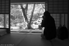 清瀧寺徳源院 ええの撮れました?
