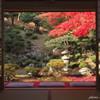 額縁庭園~徳源院の秋