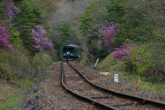 御伽の国行き小人の高原鉄道①