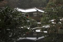 冬のBASARA庭園②