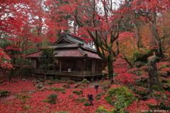 秋の隠れ里~赤い本堂