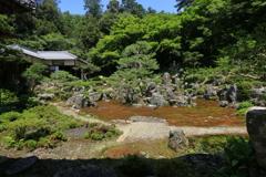 夏の庭園②