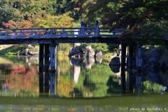 橋の下のリフレクション