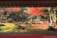 秋のroadshow