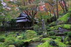 秋の隠れ里~石の庭園