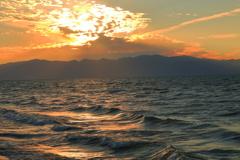 黄金(こがね)の波に