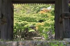 秋への山門
