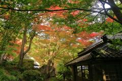 かくれ里の秋②