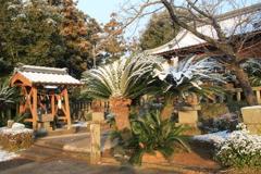 長崎は今日は、雪だった!(^^)!