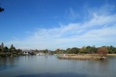 スワンボートのある池