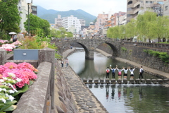 紫陽花の咲くころの眼鏡橋(^^)/