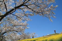 春の行楽(^^)/