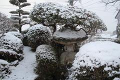 雪やコンコン、積もりました(^^♪