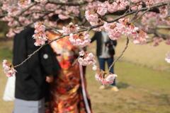 門出の春(^^♪