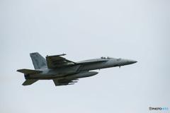 アメリカ海軍 ボーイング F/A-18E スーパーホーネット (NF307)