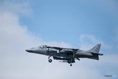 アメリカ海兵隊 マクダネル ダグラス AV-8B ハリアー II (WL00)