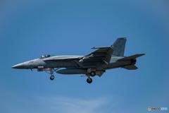 アメリカ海軍 ボーイング F/A-18 スーパーホーネット (NF201)