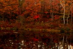 一の沼の紅葉
