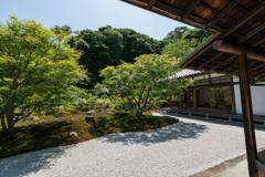 長寿禅寺 小方文・書院裏庭園①