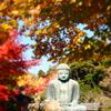 鎌倉 大仏殿1-2