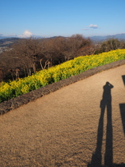 二宮 吾妻山公園で自撮り