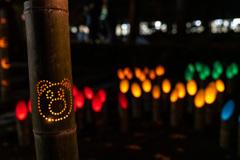 東口本宮冨士浅間神社の紅葉祭_DSC07076