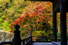 妙本寺(DSC02013)