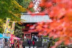 東口本宮冨士浅間神社の紅葉祭_DSC06986