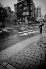 雨の予感ー3