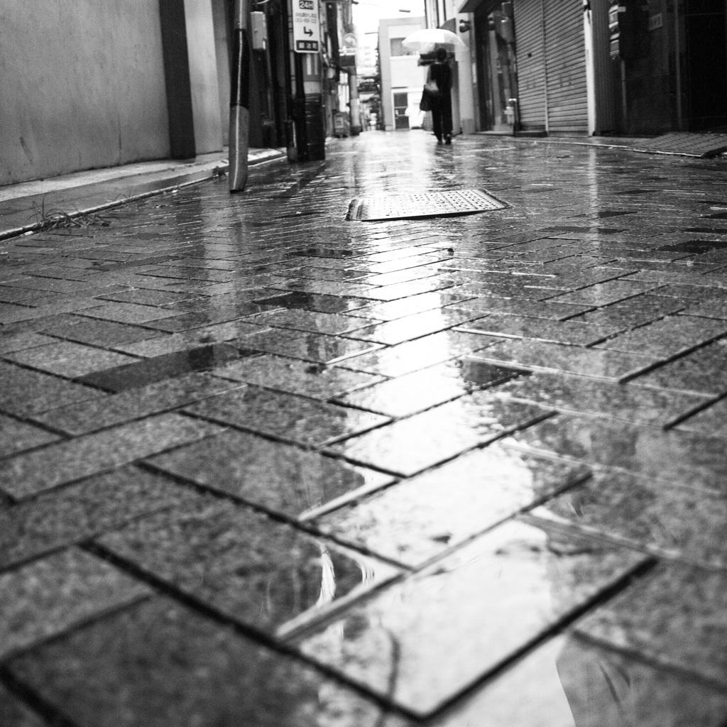 雨の季節-4