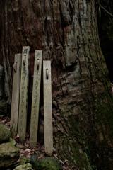 山寺散歩5