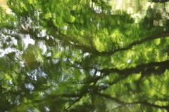 新緑の油絵 2