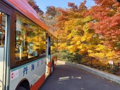 バス停の錦絵