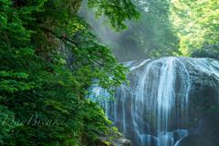 新緑の関山大滝 その2
